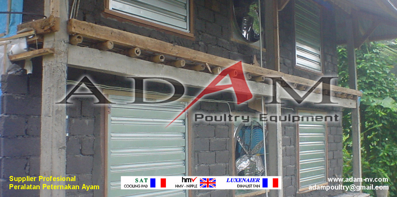 Pengerjaan Kandang Broiler Close House di Kupang