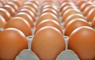 Telur di Tray